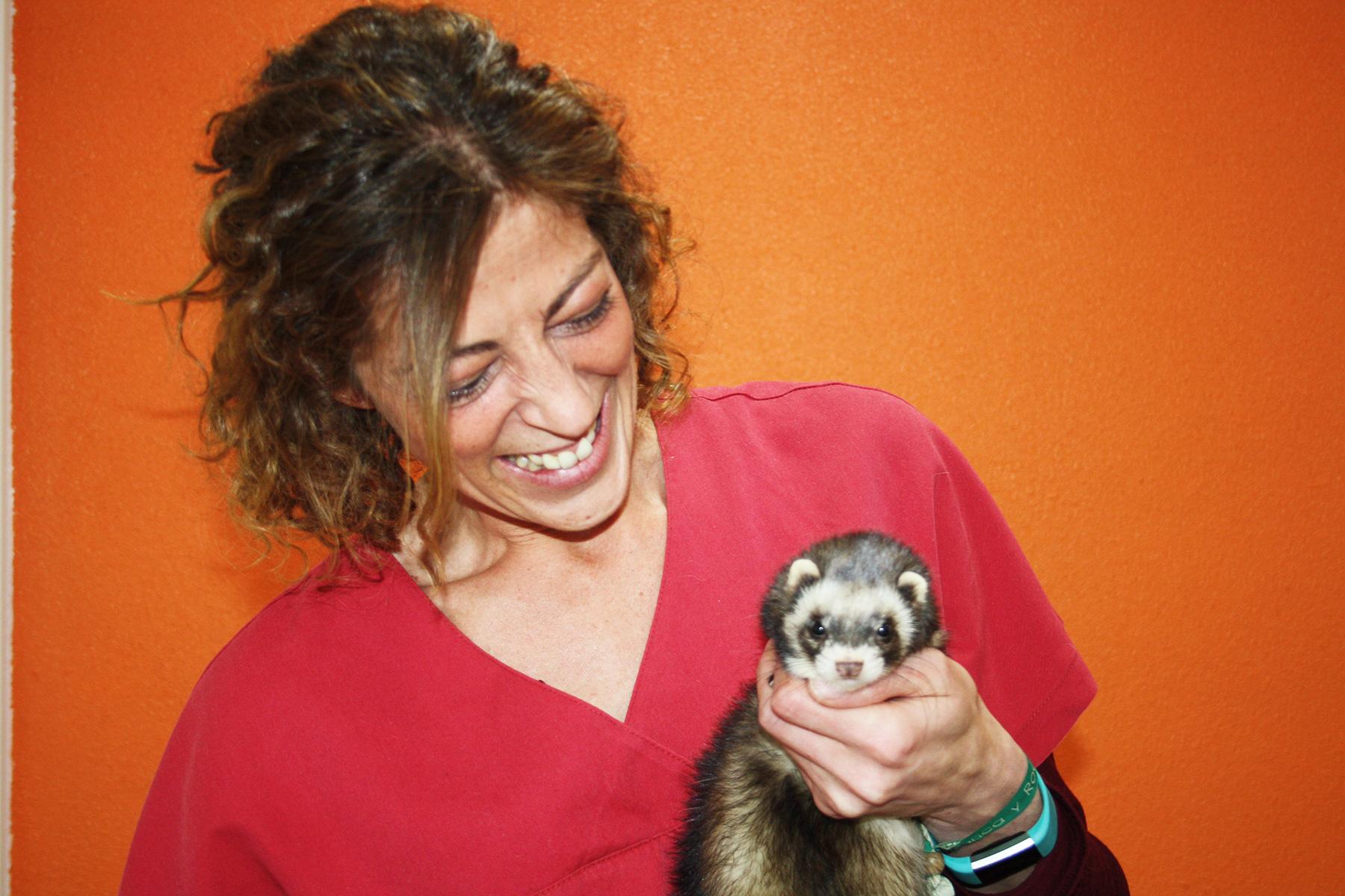 veterinaria animales exóticos